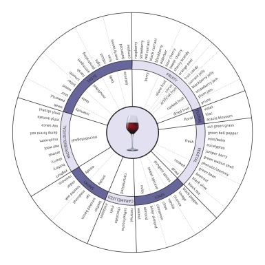 Aroma Wheel - Red