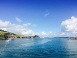 Lily NZ Waiheke approach